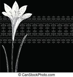 iris, cadre, ornement, vecteur, noir, bannière