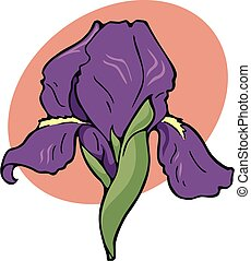 iris, emblema