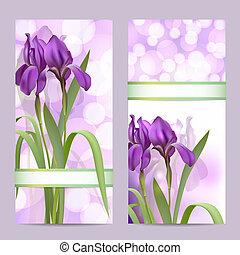iris, ensemble, pourpre, printemps, bannières, fleurs