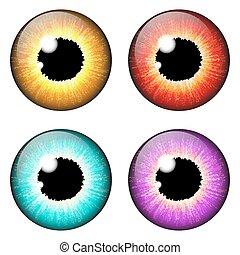iris eye realistic  vector set design isolated on white background