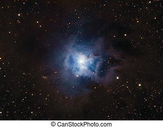 iris, nebulosa, ngc7023