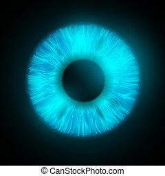iris, oeil, humain
