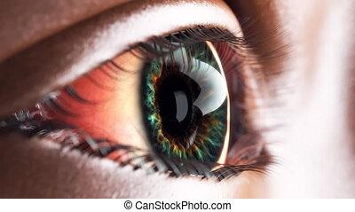 iris, oeil, macro, intérieur., animation, en mouvement, 4k