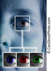 Iris Scan - An iris scan concept image