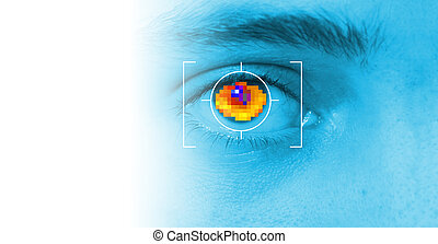 iris security scan