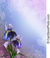 iris, uitnodiging, of, mal