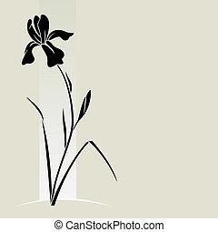 iris, vecteur, flower.