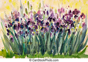 Irises - Violet iris flowers in garden.Picture created with...