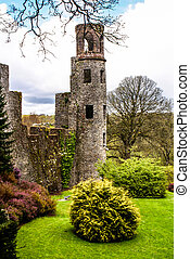 Irish castle of Blarney , famous for the stone of eloquence....