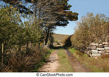 Country track on the Carraun peninsula, county Mayo, Ireland.