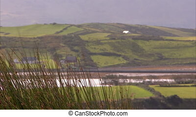 A steady scenic shot of Ireland hills and green landscapes.
