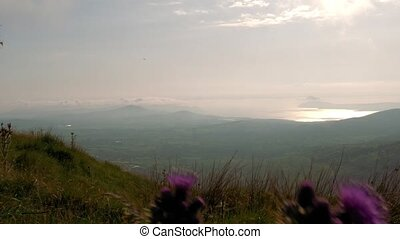 Irish Landscapes Through Moving Thistles, Country Cork,...