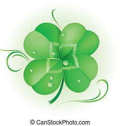 irlandés, trébol