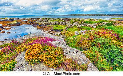 irland, landschaftsbild, hdr