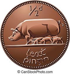 irlandais, halfpenny, argent, cochons, vecteur, monnaie