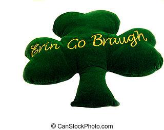 irlandais, oreiller