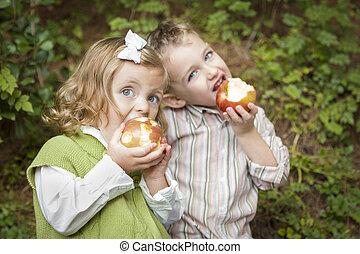 irmã, comer, irmão, exterior, maçãs, adorável, crianças
