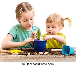 irmãs, acoplado, pequeno, jardinagem, dois