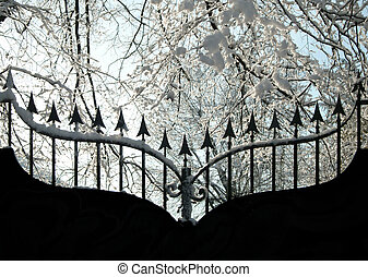 Iron gate in winter