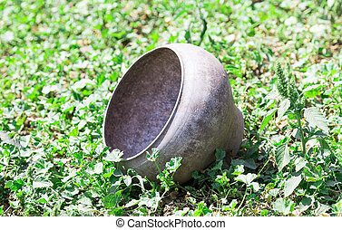 iron pot against the background of green grass