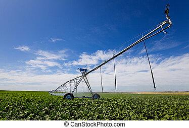 irrigação, ferramenta