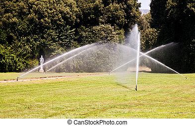 irrigação, garden:, luxo
