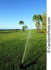 irrigação, jardim, sistema