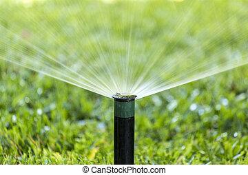 irrigação, jardim, sistema molhando, pulverizador, lawn.