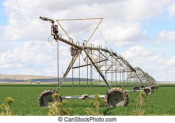 irrigação, pivô