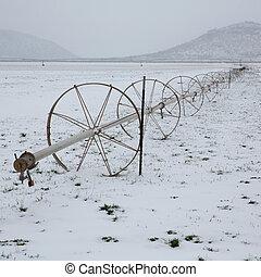 irrigación, campos, nieve, cereal, ruedas, nevada
