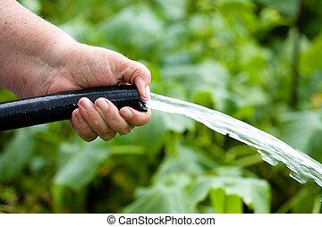 irrigación