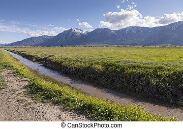 irrigación, nevada, valle, carson, zanja