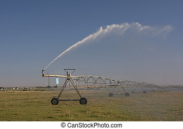 irrigated meadow with sprinklers running - irrigated meadow...