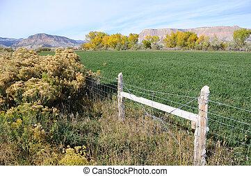 Irrigated Utah Desert Farm in Fall