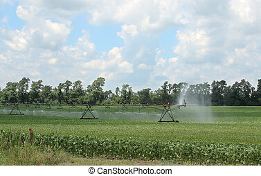 Sprayer irrigating a farm field of soybeans