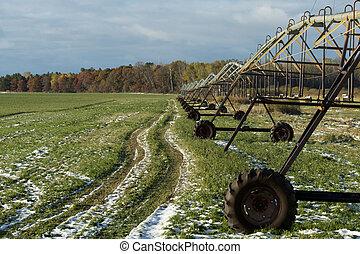 Irrigating an Alfalfa field