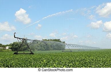 Irrigating Farmland