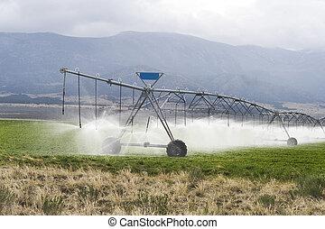 Irrigating Farmland.