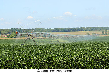 Irrigating Farmland
