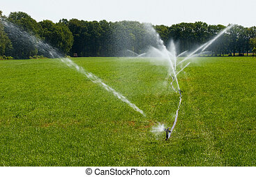 Irrigating grassland in a period of drought in the summer in...