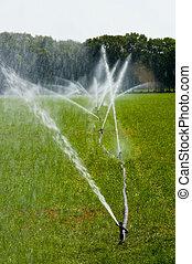 irrigating grassland - Irrigating grassland in a period of...