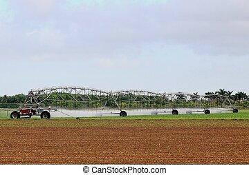 Irrigation - 3