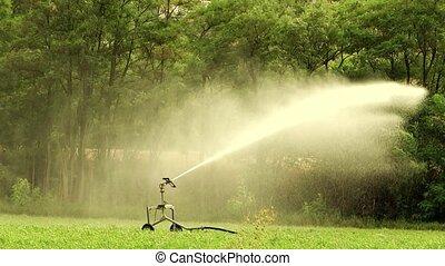 irrigation, automatique, agriculture
