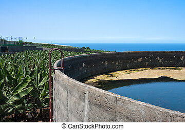 Irrigation basin in banana plantation at La Palma