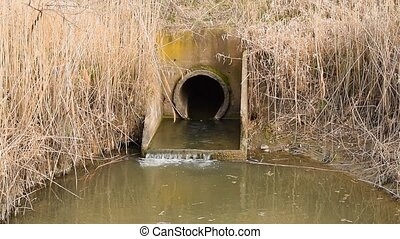 irrigation, champs, système, canaux, entre, riz, porte