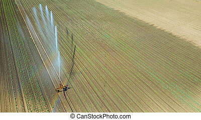 Irrigation equipment watering field. Aerial view. Irrigation of a young plants.