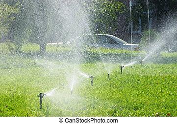 Irrigation grass field in the park, Astana, Kazakhstan