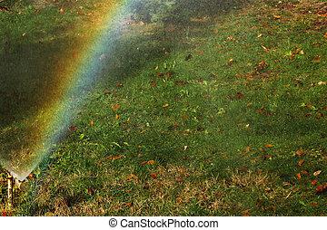 Irrigation in autumn with rainbow