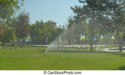 irrigation, jardin eau, sprinkler., en mouvement