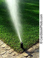 irrigation, jardin, système